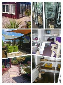 Greenacre Luxury Cat Hotel Ltd