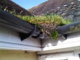 Gcs Gutter Cleaning Specialists Ltd - Guttering Repair in Croydon