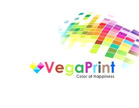 Flyer And Leaflet Printing Services In Cardiff   Vegaprint Ltd