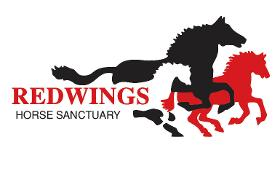 Redwings Horse Sanctuary Ada Cole Visitor Centre