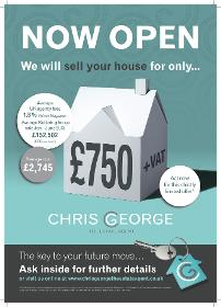 Chris George The Estate Agent